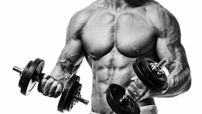 Proteine per chi si allena con i pesi. Quante proteine per avere risultati in palestra?