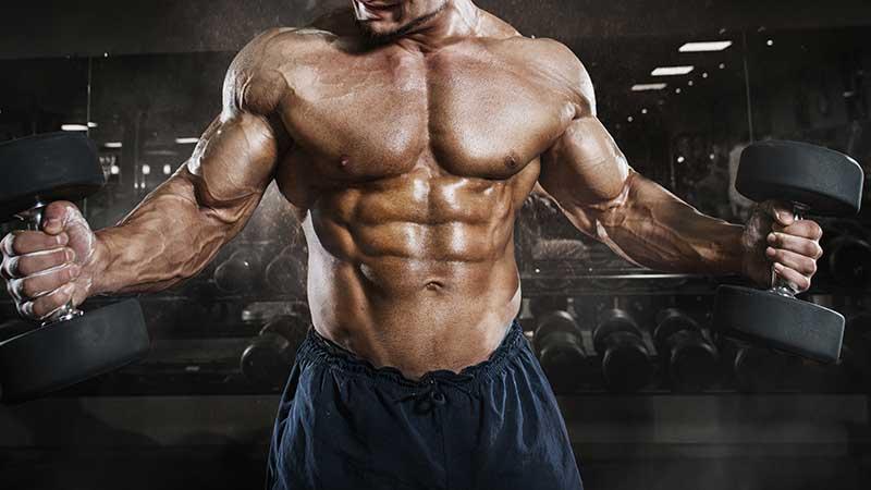 Allenarsi in palestra per aumentare la massa muscolare. Sì... ma quanto, e quando?