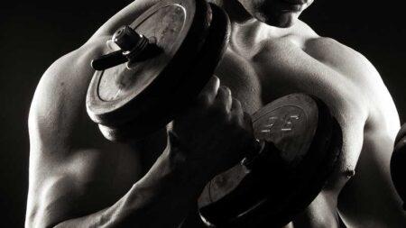 Principi di base nell'allenamento per la massa muscolare