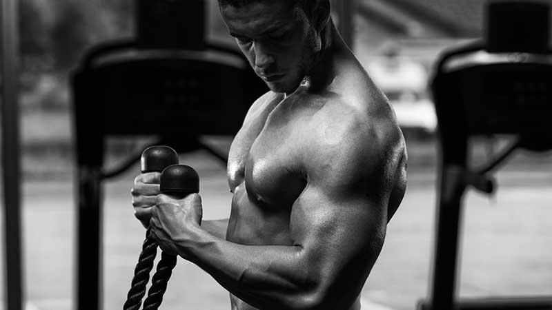 La dieta e le regole da seguire per aumentare la massa muscolare (senza ingrassare). Dieta e body building