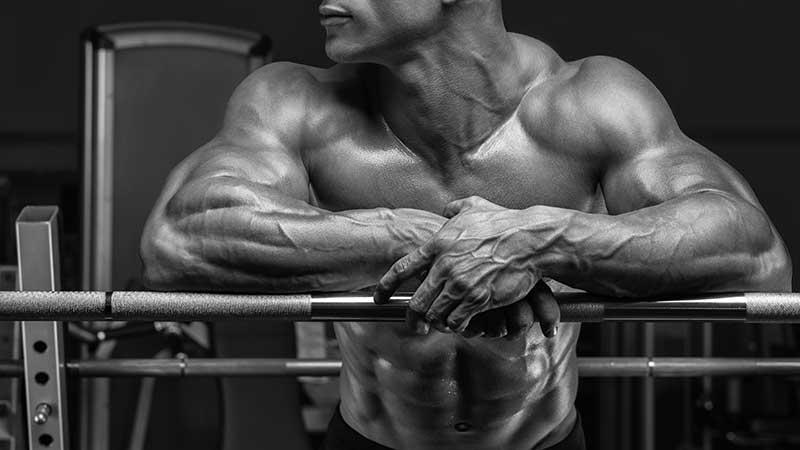 Gli integratori 'mass gainer', supplementi per l'aumento della massa muscolare. Servono? Fanno ingrassare? Come vanno usati?